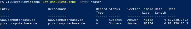 Einträge des DNS Cache gefiltert mit PowerShell